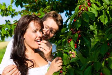 Glückliches Paar beim Kirschen essen im Sommer