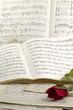 Composizioni romantiche