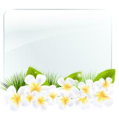 Glass Frame With Frangipani