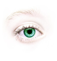 close up of a green eye