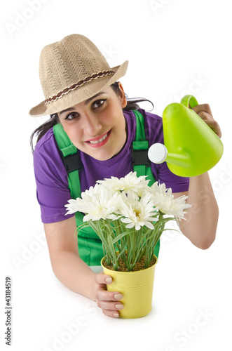 Girl watering plants on white