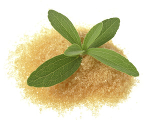 stevia rebaudiana with a sugar