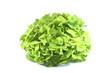 salade feuilles de chêne