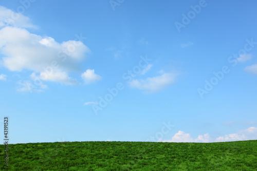 Niebieskie niebo i zieleń