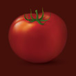 Big tomato on dark background