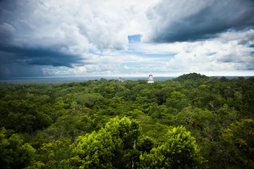 Mayan ruins in Tikal site, Guatemala. View from temple IV