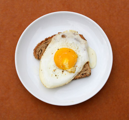 Fried Egg over Toast
