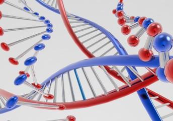 DNA  Rojo Azul