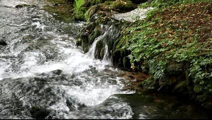 River Vrelo creek, Perucac, Tara Serbia