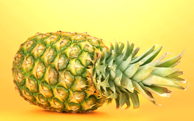 pineapple on orange background