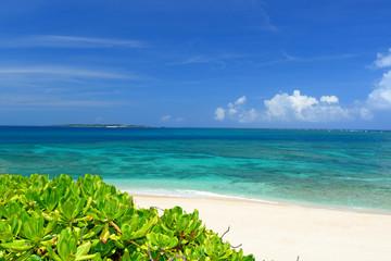 コマカ島の美しいビーチと夏空