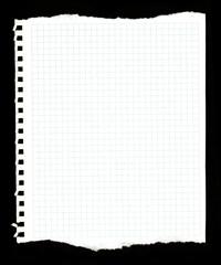 Papel rasgado, fondo, bloc de notas