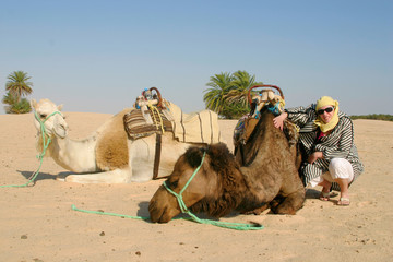 Young woman with camels in Sahara