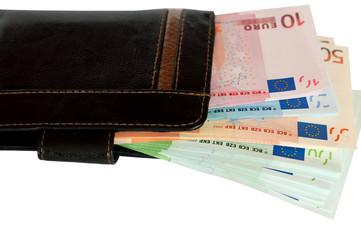 Purse and European money.