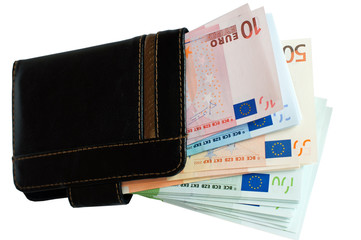 Purse and European money.