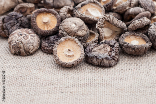 Shiitake mushrooms on jute background