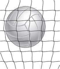 Volleyball and Net