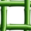 Cornice di Bambù-Bamboo Frame-Vector