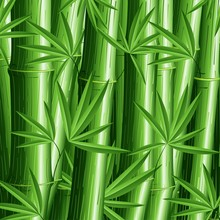 Bambù Sfondo-Bamboo Pattern Background-Vector