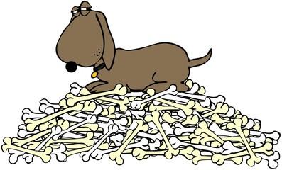 Dog guarding a pile of bones