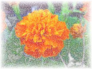 sfondo astratto multicolore con fiori