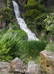 Garden waterfall in Golden Gate Park, San Francisco