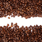 Coffee beans on plain background