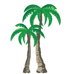 Two tropical palm trees isolated on white background. Vector.