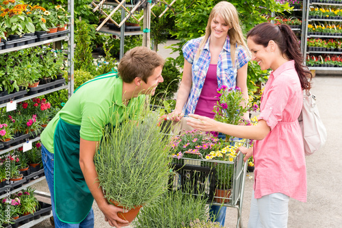 Garden centre salesman offer potted plant