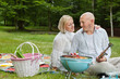 Couple On An Outdoor Picnic