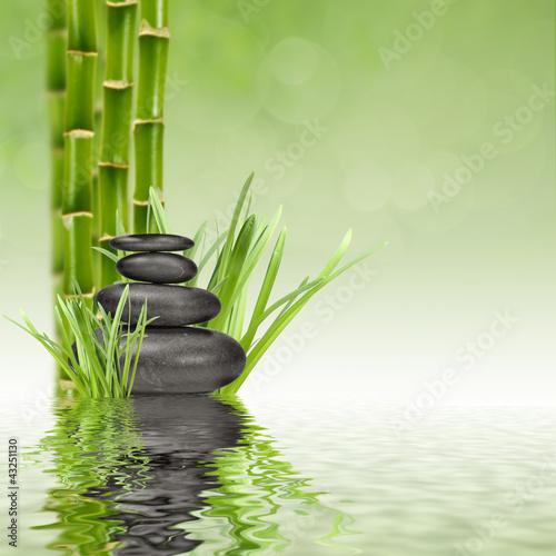 Fototapeten,bambus,massage,kurort,steine
