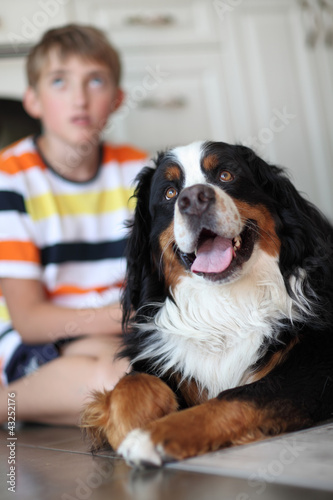 Boy and dog. Focus  on the dog