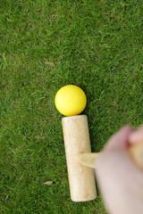 Croquet Spiel (Hochformat)