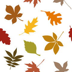 Leafs Seamless Pattern Autumn Colors