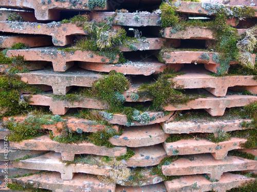 ziegelmauer mit moos von waltphoto lizenzfreies foto 43258742 auf. Black Bedroom Furniture Sets. Home Design Ideas