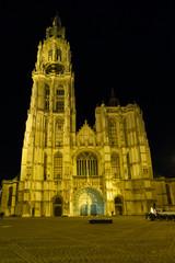 Antwerp Cathedral Front Night Square