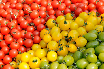 Colorful assorted tomatoes