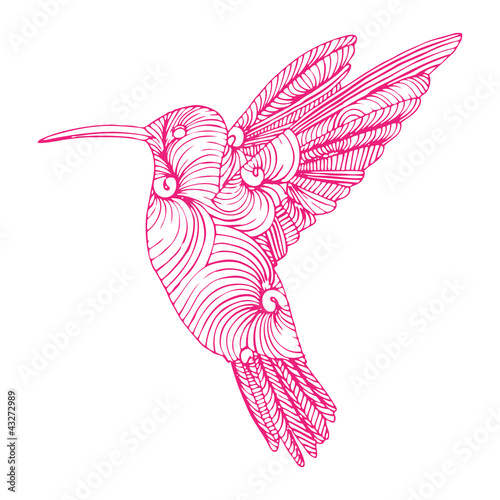 pink hummingbird flying