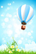 Flowers in the Grass and Hot Air Balloon in the Sky
