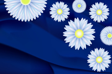 Daisies and marguerites
