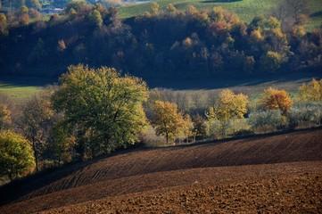 Paesaggio della Campagna Romana nella Valle del Tevere