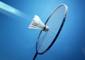 Badminton, shuttlecock