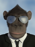 Mr.Monkey - Portrait with sunglasses