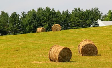four bales of hay on a new england hillside