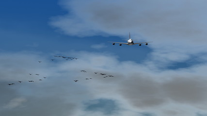 A Boeing 747 Jumbo jet flies through a flock of birds.