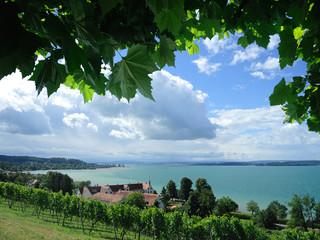 Bei Birnau am Bodensee