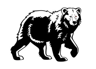 bear black and white