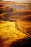 Fototapety typical Tuscany landscape, Italy