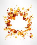 Fototapety Maple leaves background