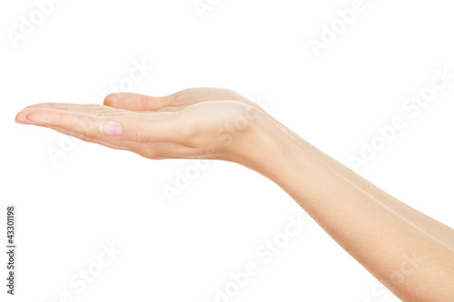 Empty Human Hands(Beauty Woman hands) on isolated white